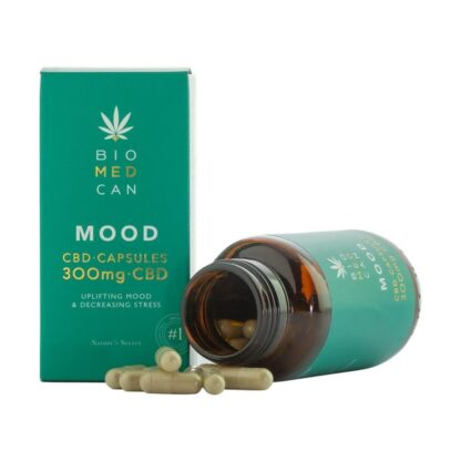 Rich results on Google's SERP when searching for 'Biomedcan Mood CBD'